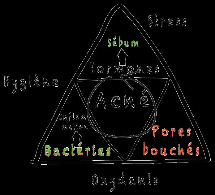 Zactigis Skin: acné, hygiène, sébum, inflammation, boutons
